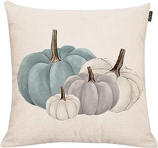 Fall Pumpkins Throw Pillow Cover Autumn Decor Drawing White Pumpkin Pillow Case for Couch Sofa Home Decoration Fall Pillows Linen 18 X 18 Inches
