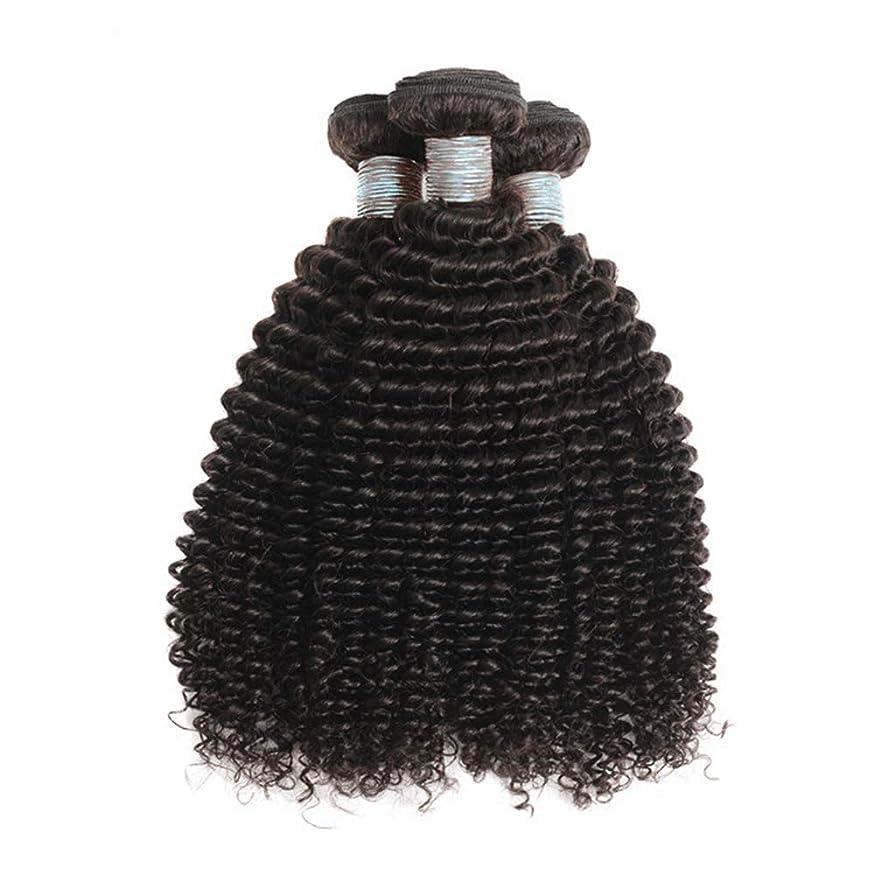 親愛なうなずく買い手美しい8Aブラジルの髪の束ブラジルの巻き毛の束未処理のブラジルの人間の髪の束変態の巻き毛3束