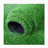SUNNAIYUAN Tapis Gazon Artificiel Herbe Synthétique Réaliste Haute De 20 Mm Tapis De Gazon Artificiel for Trou De Drainage Intérieur Et Extérieur for Balcon De Jardin (Size : 2X0.5M)