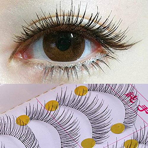 Fanxing Grande vente 10 Paires/Lot entrecroisés False Eyelashes Lashes Volumineux Hot Eye (noir)