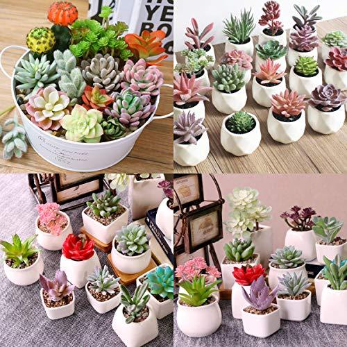 Augshy Artificial Succulent Flocking Plants-16 Pack