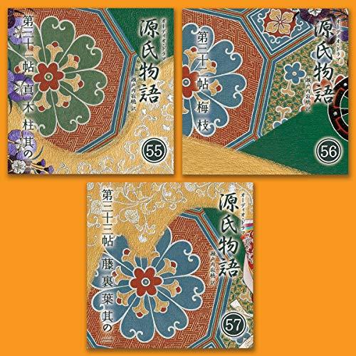 『源氏物語 瀬戸内寂聴 訳 3本セット(十九)』のカバーアート