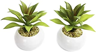 Tuokor Small Artificial Plants in Ceramic Pots, Agave Faux Greenery 2 pcs Set 3.5