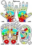 Reflexzonenübersicht - Füße, Hände und Ohr DIN A4 Karte (Lehrtafeln/Übersichtskarten) - Tanja Aeckersberg