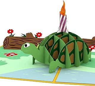 Lovepop Celebration Turtle 3D Pop-Up Greeting Card