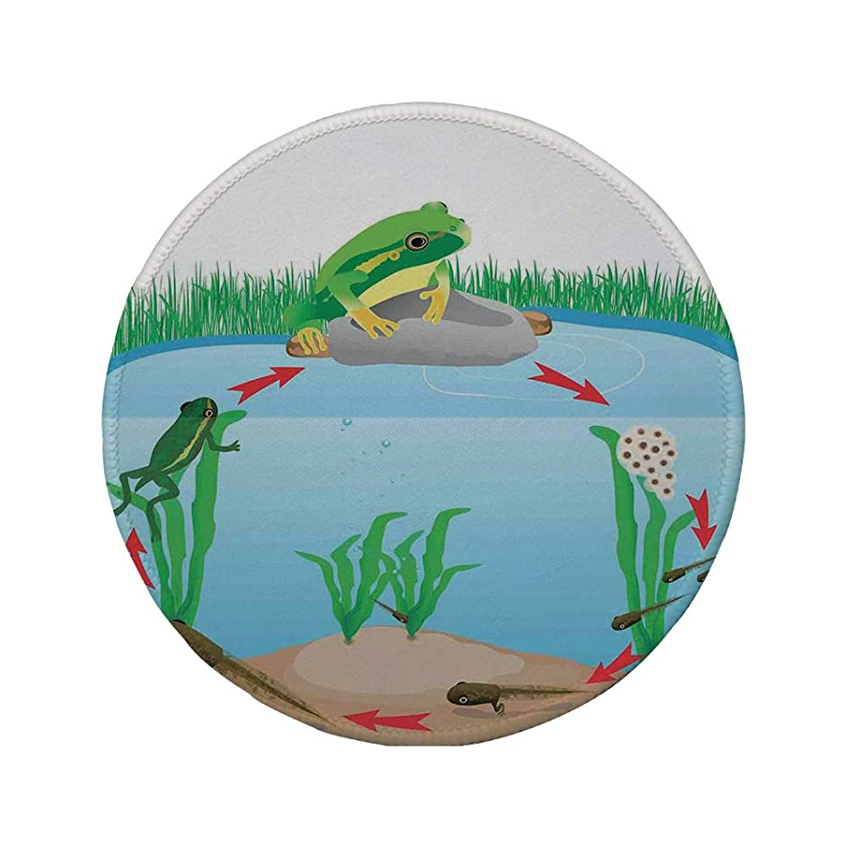 Non-Slip Rubber Round Mouse Pad,Animal Decor,Life Cycle of Tropic Tree Frog Presents with Aquatic Elements Evolution in Nature,Multi,7.87