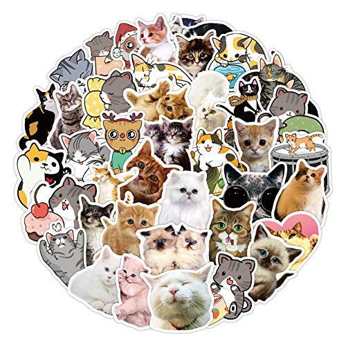 50 pcs Cat Stickers for Cars Water Bottles Laptop Scrapbooking Computers Phone Case Hydro Flask, Cute Waterproof Cat Vinyl Stickers for Adults Girls Toddler Kids Party Favors
