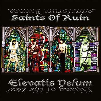 Elevatis Velum (Instrumental Edition)