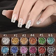 SaiDeng 12 Colors/Set 2g Holographic Laser Powder Nail Art Glitter Rainbow Pigment Manicure Chrome Pigments