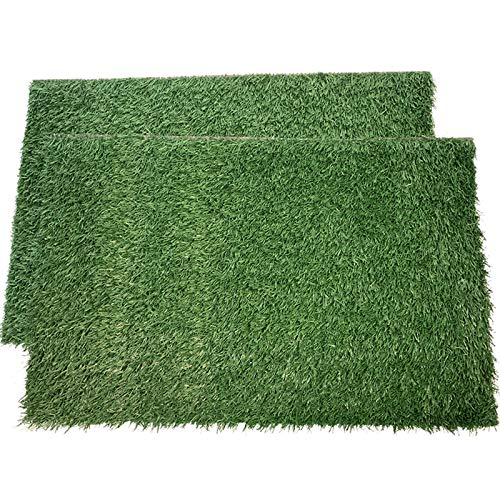 LOOBANI Dog Grass Pee Pads, Artificial Turf Pet Grass Mat Replacement for Puppy Potty Trainer Indoor/Outdoor Use - Set of 2 (18 x 23)