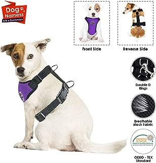 Amazon.es: cinturon perro coche homologado