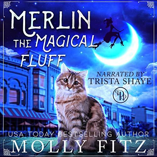 Merlin the Magical Fluff cover art