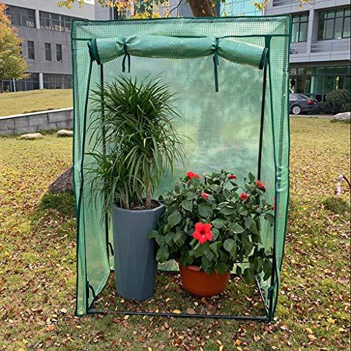 XY&CF-Flower house Support de Serre végétale en Acier Inoxydable PE Couverture Serre Jardin (100 * 48 * 150cm)