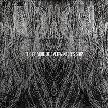 The Prairie of Everwinter's Grip
