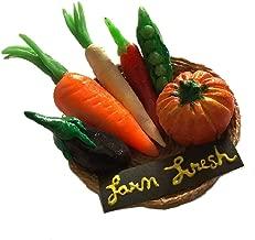 Aranya Creations Farm Fresh Vegetable Fridge Magnet