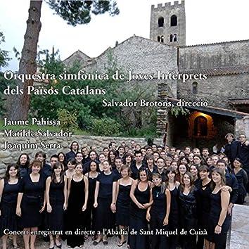 Orquestra Simfònica de Joves Intèrprets dels Països Catalans (OJIPC) 2007