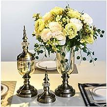 Flowers Vase Transparent Plant Vase Living Room Decoration with Lid with Dried Flower Set (1 Set 2 Pieces) Flower Bottle