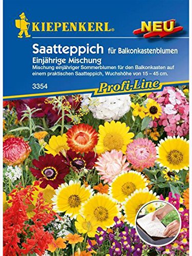 Blumenmischung, Saatteppich für Balkonkastenblumen