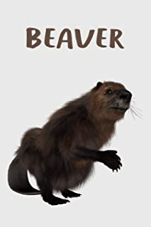 Beaver Journal: Lined Journal & Planner To Write In, A Notebook For Beaver Lovers, Beaver Gifts For Him And Her.