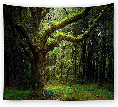 ZYLSZBD Tapestry The Tapestry Wall Hanging Tapestries Home DecorDecorative cloth forest print-Picture 5_200X150cm