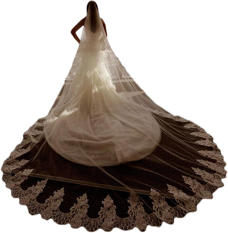 Fenghuavip 2T Bridal Veils Lace Trim Wedding Veil 3 Meters 4 Meters with Free Comb