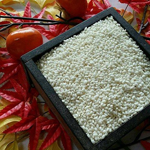 令和2年 熊本県産 もち米 ひよくもち 精白米 20kg