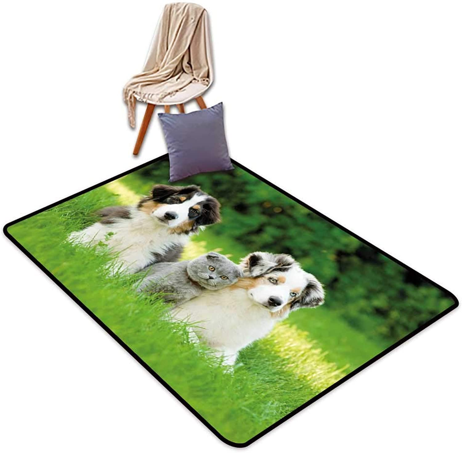 Entrance Door mat Dog Cute Pets Puppy Family in The Garden Australian Shepherds and A Cat Scenery W5'xL7' Suitable for Family
