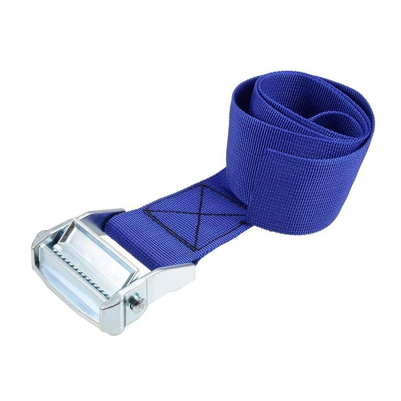 テロリスト咲く高いuxcell 荷物ストラップ ラチェット式 ベルト 荷物固定ロープ 荷物落下防止 ブルー ポリプロピレン 亜鉛合金 カムロックバックル付き 500Kg作業負荷 0.8Mx5cm