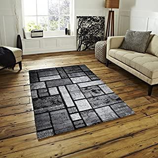 Msrugs Frize Collection Contemporary Area Rugs for Living Room 5x7 and 8x10 (2'x3', Gray-7513)