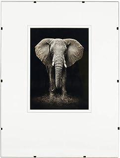 Postergaleria | Antyrama na zdjęcia, plakat | Bezbarwna ple