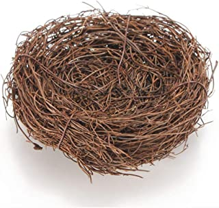 bird nest for newborn photography