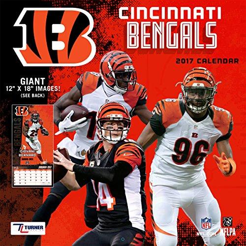 "Turner Licensing Sport 2017 Cincinnati Bengals Team Wall Calendar, 12""X12"" (17998011905)"