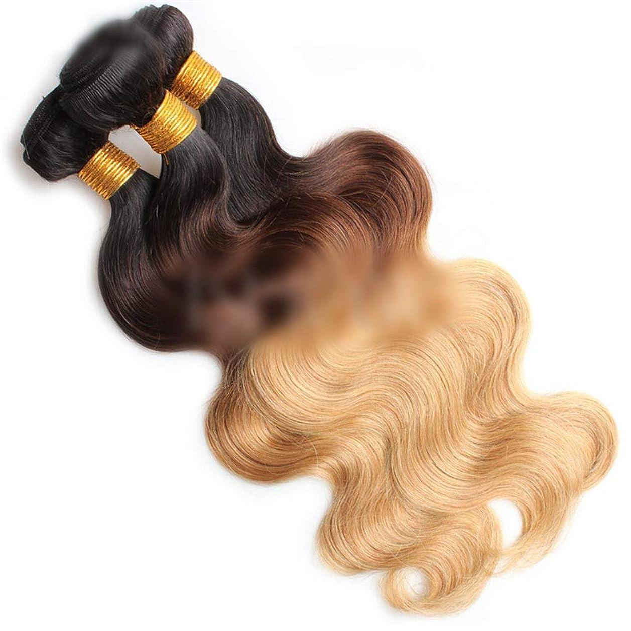 独立して敬礼モニターYrattary 実体波オンブルヘアバンドルナチュラルヘアエクステンション横糸 - 1B / 4/27#金髪3トーンカラー(100g / 1バンドル、10インチ-26インチ)合成髪レースかつらロールプレイングウィッグロング&ショート女性自然 (色 : Blonde, サイズ : 24 inch)