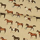 Dekostoff Pferde Dekostoffe - Preis gilt für 0,5 Meter