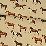 Tela decorativa con diseño de caballos, 0,5 metros