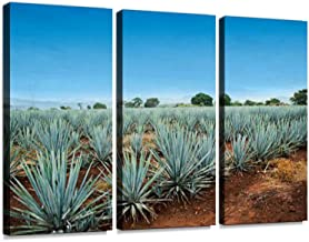 Tequila Landscape 3 Pieces Print On Canvas Wall Artwork Modern Photography Home Decor Unique Pattern Stretched and Framed ...