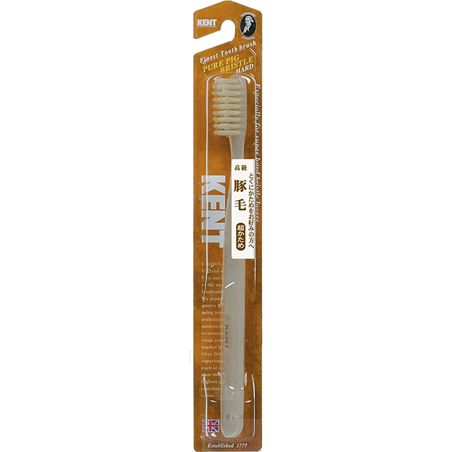 司書うつわずかにKENT 豚毛歯ブラシ ラージヘッド 超かため KNT-2433 ×5個セット