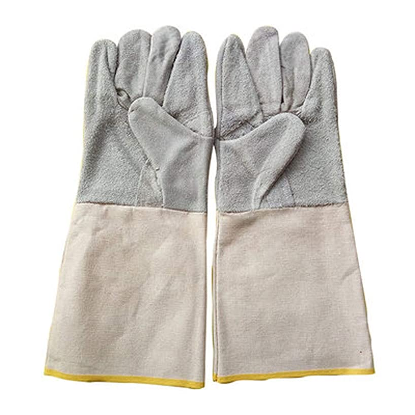 QqHAO TYXHZL Long Canvas Cuffs Welding Gloves, Extremely Heat-Resistant Fireproof Gloves, Suitable for Industrial fireplaces, stoves, ovens, Grills, Welding, Grilling, MiG, Pot Racks, etc.