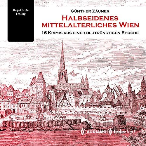 Halbseidenes mittelalterliches Wien Titelbild