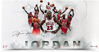 Michael Jordan Autographed #12 #23 #45 Jersey Number Photo, UDA - Limited to 123