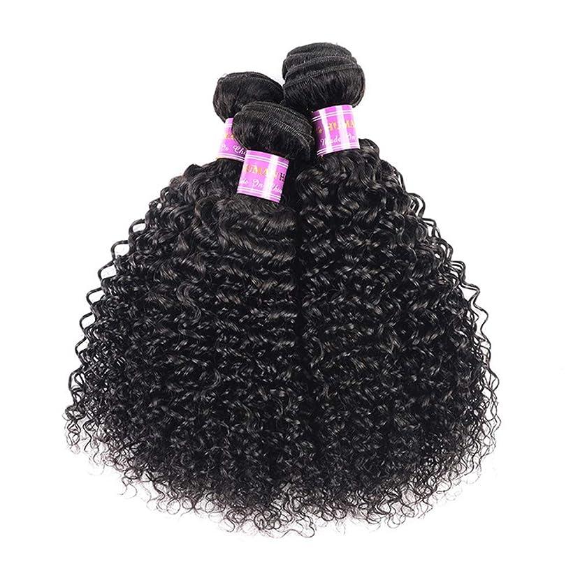 作曲家伝染性尾髪織り8a変態カーリーヘアー1バンドル人間の髪織り未処理ブラジルレミーバージンレミー髪