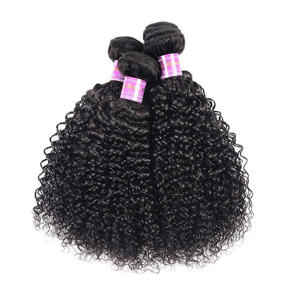 エンジン突進コードレス髪織り8a変態カーリーヘアー1バンドル人間の髪織り未処理ブラジルレミーバージンレミー髪
