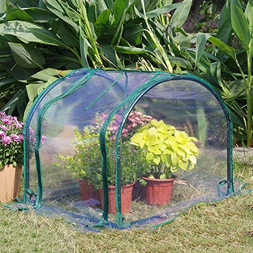 Greenhouses Gewächshaus...