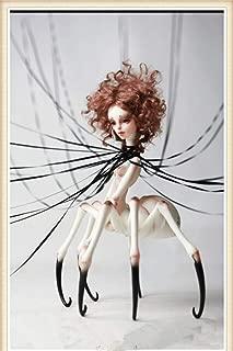 spider bjd