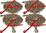 5/16' x 20' G70 Tie Down Chain and 5/16' - 3/8' G70 Lever Chain Binder (8pc Set)
