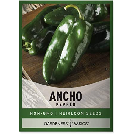 Mexican Poblano  Green Peppers Great Tasting Peppers 25 Seeds
