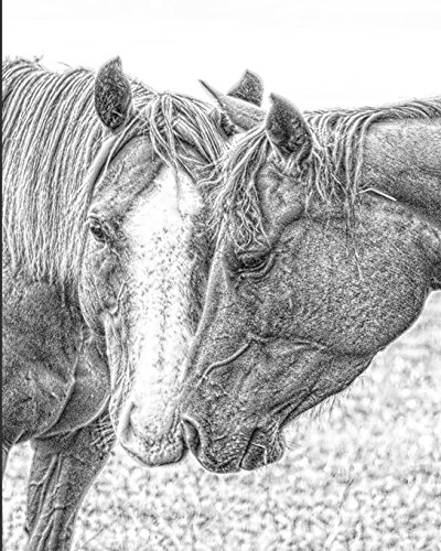 Horse Notebook: College Ruled - Lined Journal - Composition Notebook - Soft Cover Writer's Notebook or Journal for School - College or Work - Horse Love