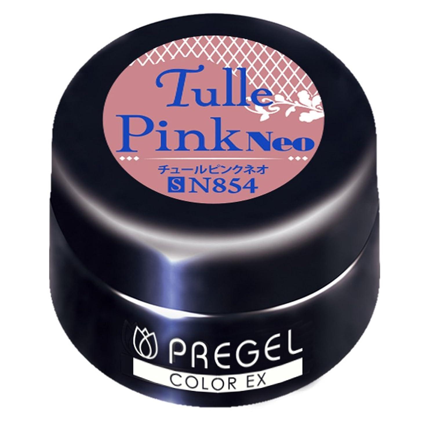 有彩色の科学慰めPRE GEL カラーEX チュールピンクneo854 3g UV/LED対応