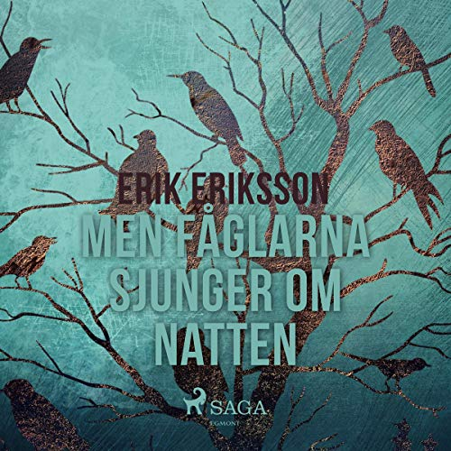 Men fåglarna sjunger om natten audiobook cover art