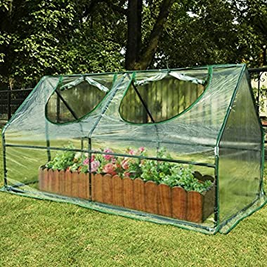 Quictent Waterproof UV protected Reinforced Mini Cloche Greenhouse 71  WX 36  D X 36  H Portable Green Hot House